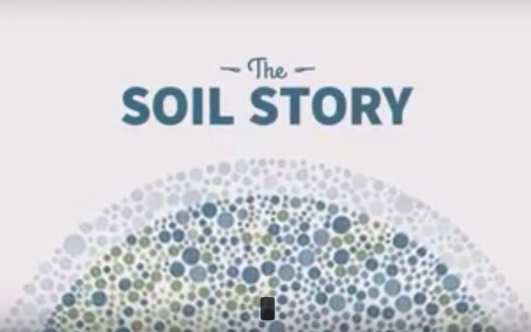 L'histoire du sol